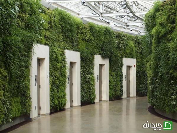 دیوار سبز عمودی در نما