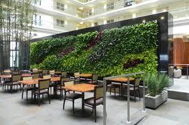 کاربرد دیوار سبز در مدرسه